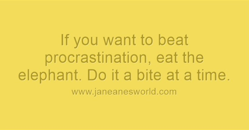 beat procrastination - eat the elephant www.janeanesworld.com