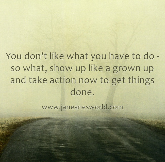 take action now even if you don't like something www.janeanesworld.com