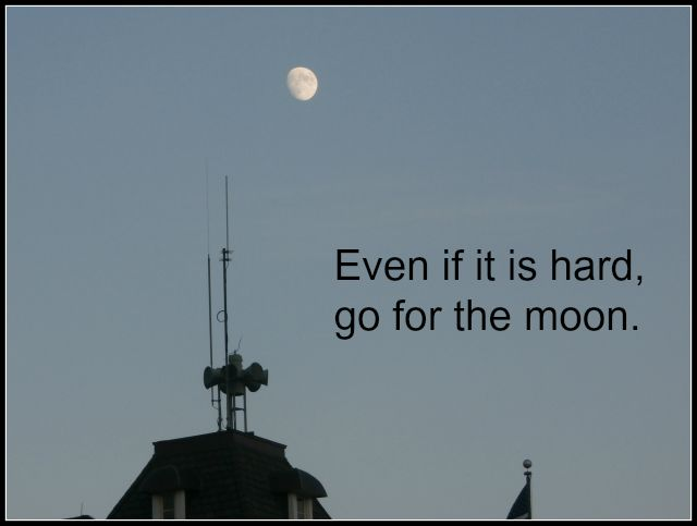 Go for the Moon www.janeanesworld.com