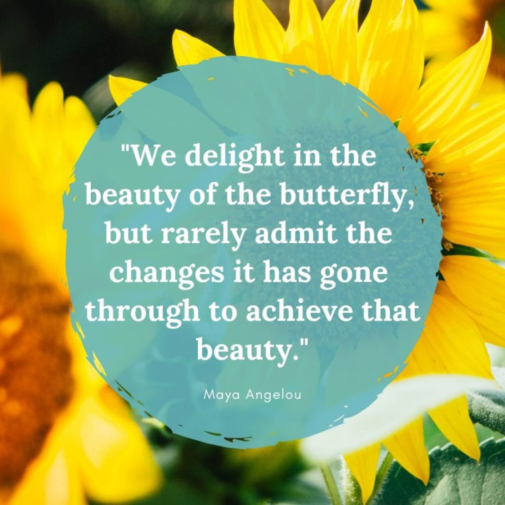 """We delight in the beauty of the butterfly, but rarely admit the changes it has gone through to achieve that beauty."""