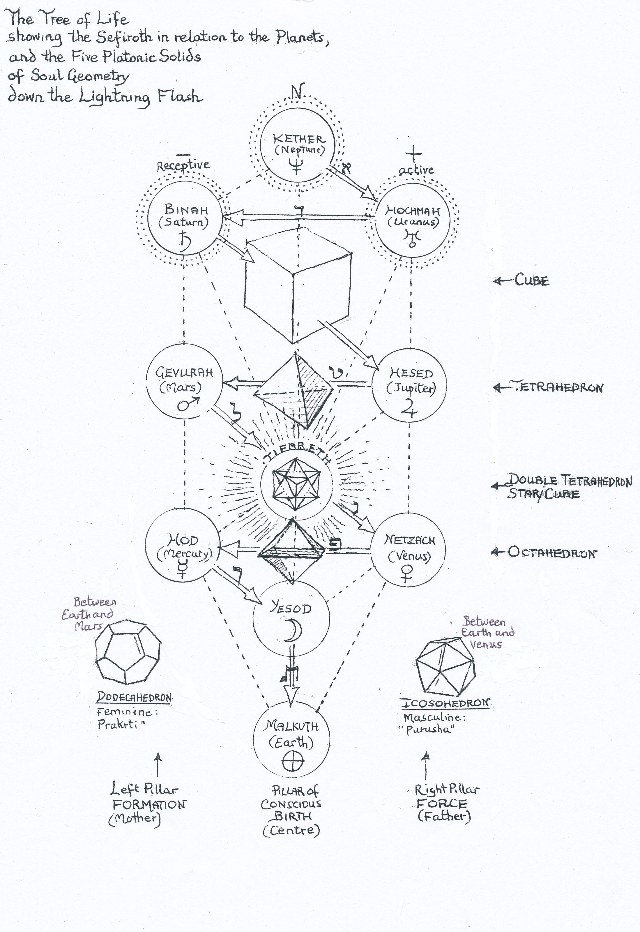 Platonic Solids On The Tree Of Life