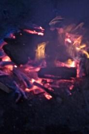 15g fire garland