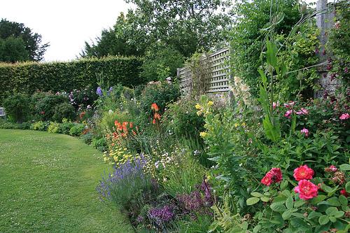 chawton-cottage-garden