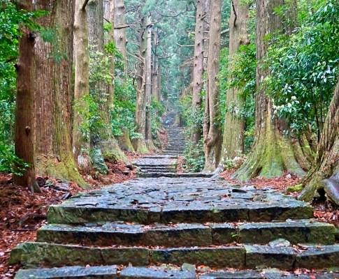 Pilgrimstur til Kumano Kodo, Japan