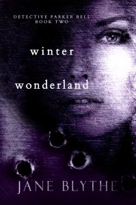 Book Cover: Winter Wonderland