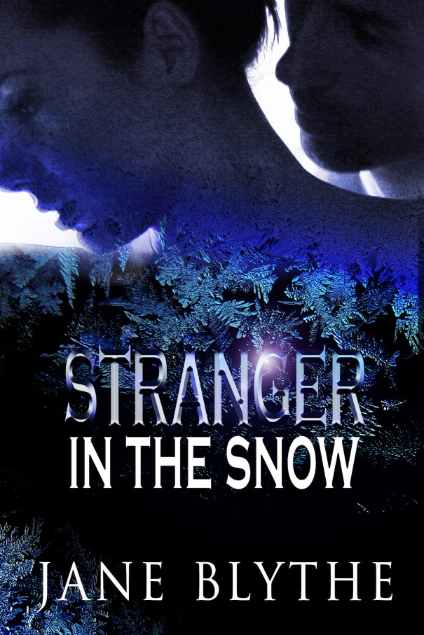 Book Cover: Stranger in the Snow