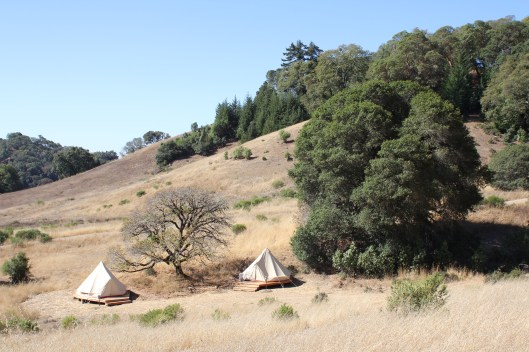Bell Valley glamping tents