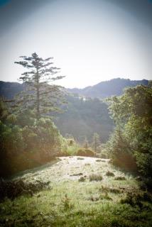 land - small file