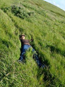 in the grasses