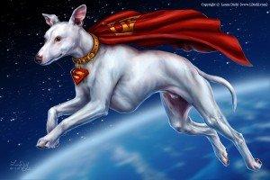Superdog by Laura Diehl