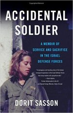 Cover for Accidental Soldier
