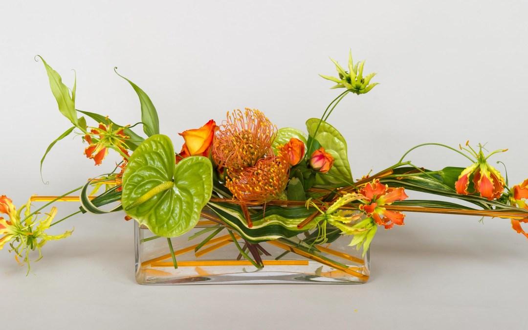 Anthurium—An Hawaiian Star