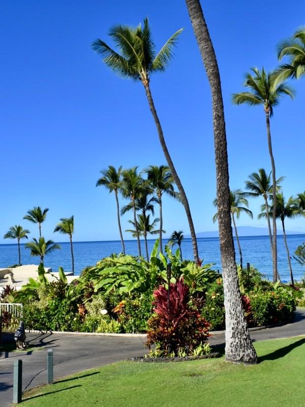 Maui Babymoon