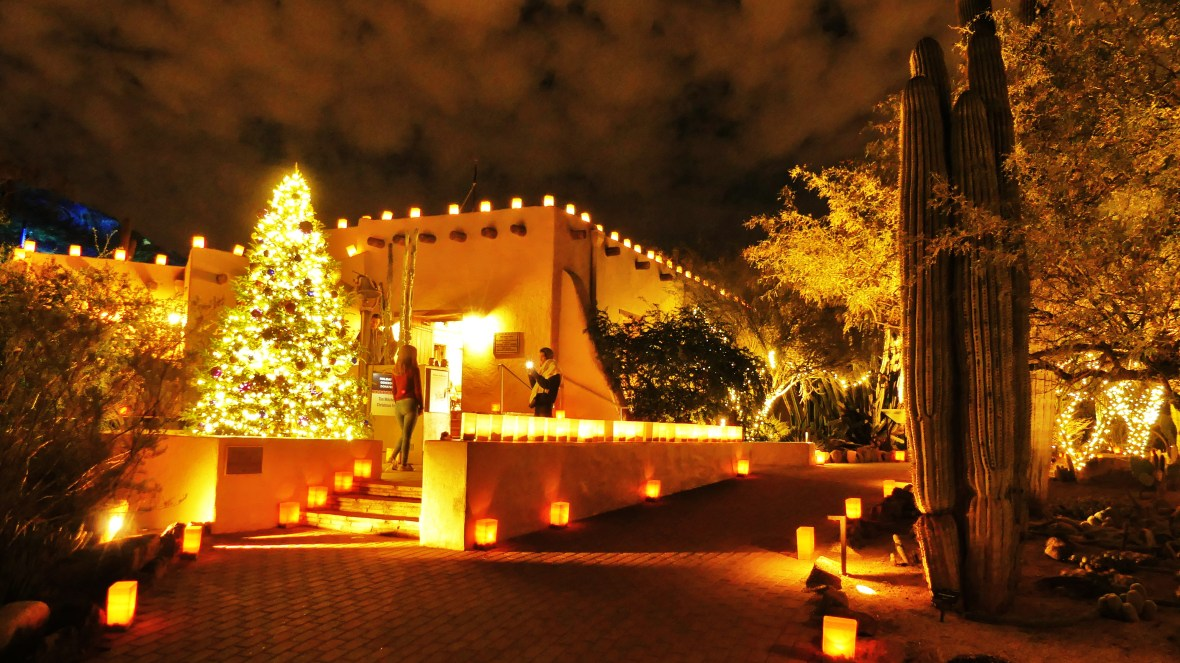 Las Noches De Las Luminarias At Desert Botanical Garden In Phoenix Jan Emming