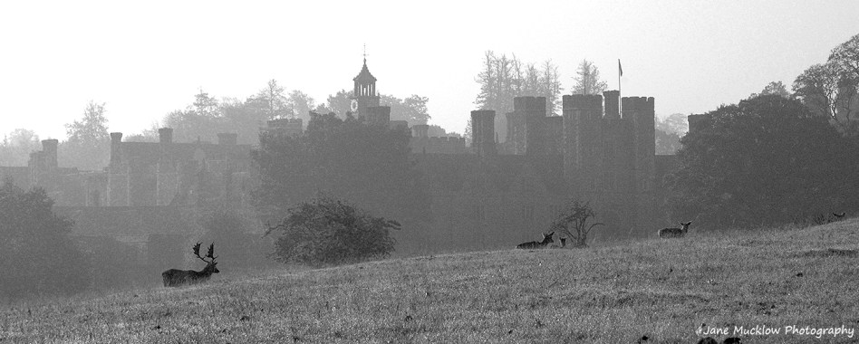 Black and white photograph of Knole, Sevenoaks, on a misty morning, by Jane Mucklow