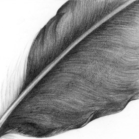 Texture Series, #7, graphite, 3x3 inches, SOLD