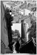 Lyon (8)