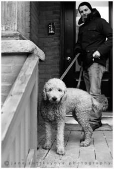 Molly on a leash