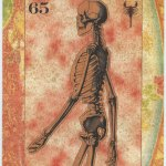 A Cabinet Of Curiosities Limited Edition Eric Tarot Card