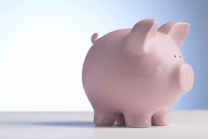 Pink piggy bank how to plan and save for a trip vacation women who travel