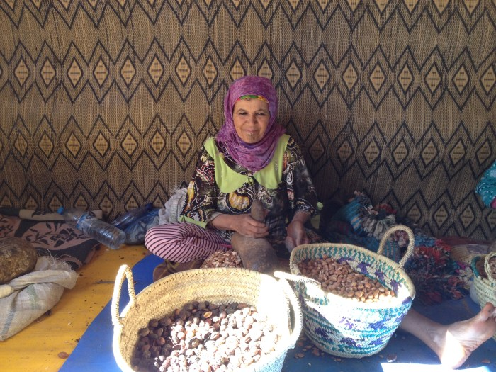 Women working with Argan Tree seeds to make oil