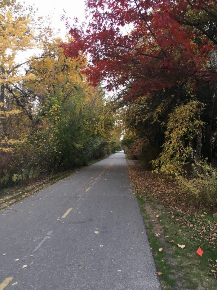 bike path Greenbelt fall