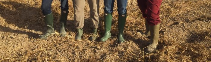 Green rain boots travel shoes for women