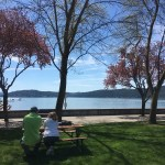 Lunch next to Lake Coeur d'Alene