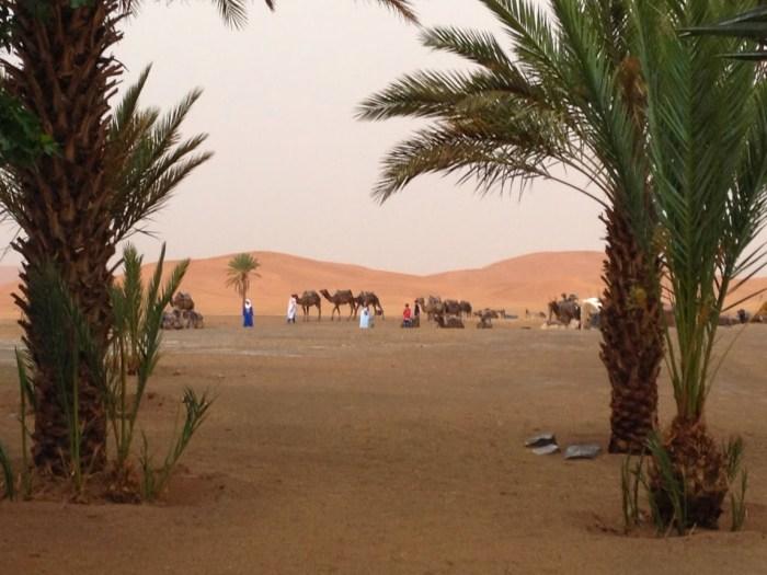 Sahara Desert in Morocco, work-life balance, travel