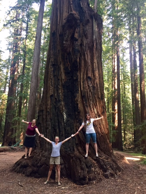 Redwood tree, California, girls' weekend, friends