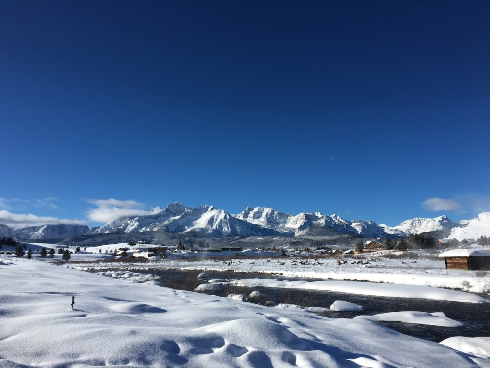 Sawtooth Mountains winter travel Stanley, Idaho, elk