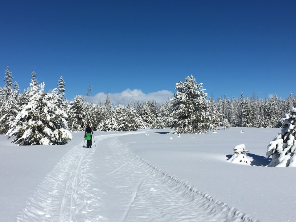 blue skies cross-country skiing idaho winter travel