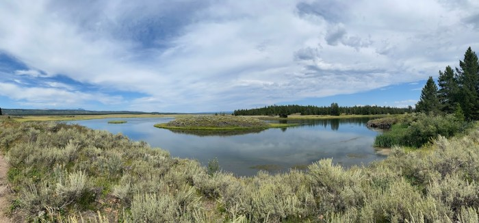 Beautiful views of Harriman State Park of Idaho