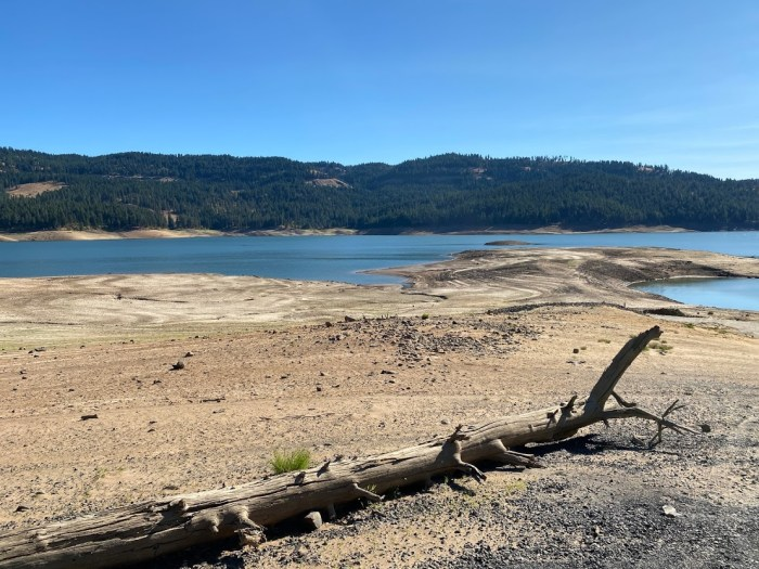 Dworshak State Park reservoir with low water levels