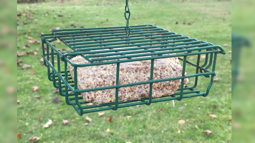 (fig. 1) Suet Feeder Horizontal