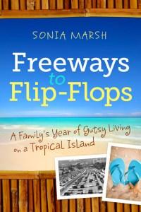 FFlipFlops-s Cover