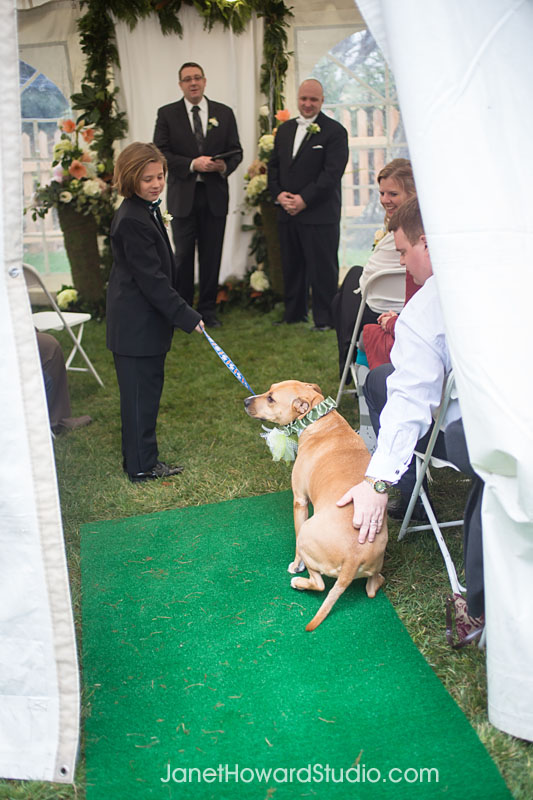 Dog ring bearer stops in aisle