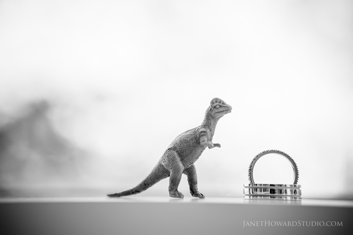 Dinosaur with rings