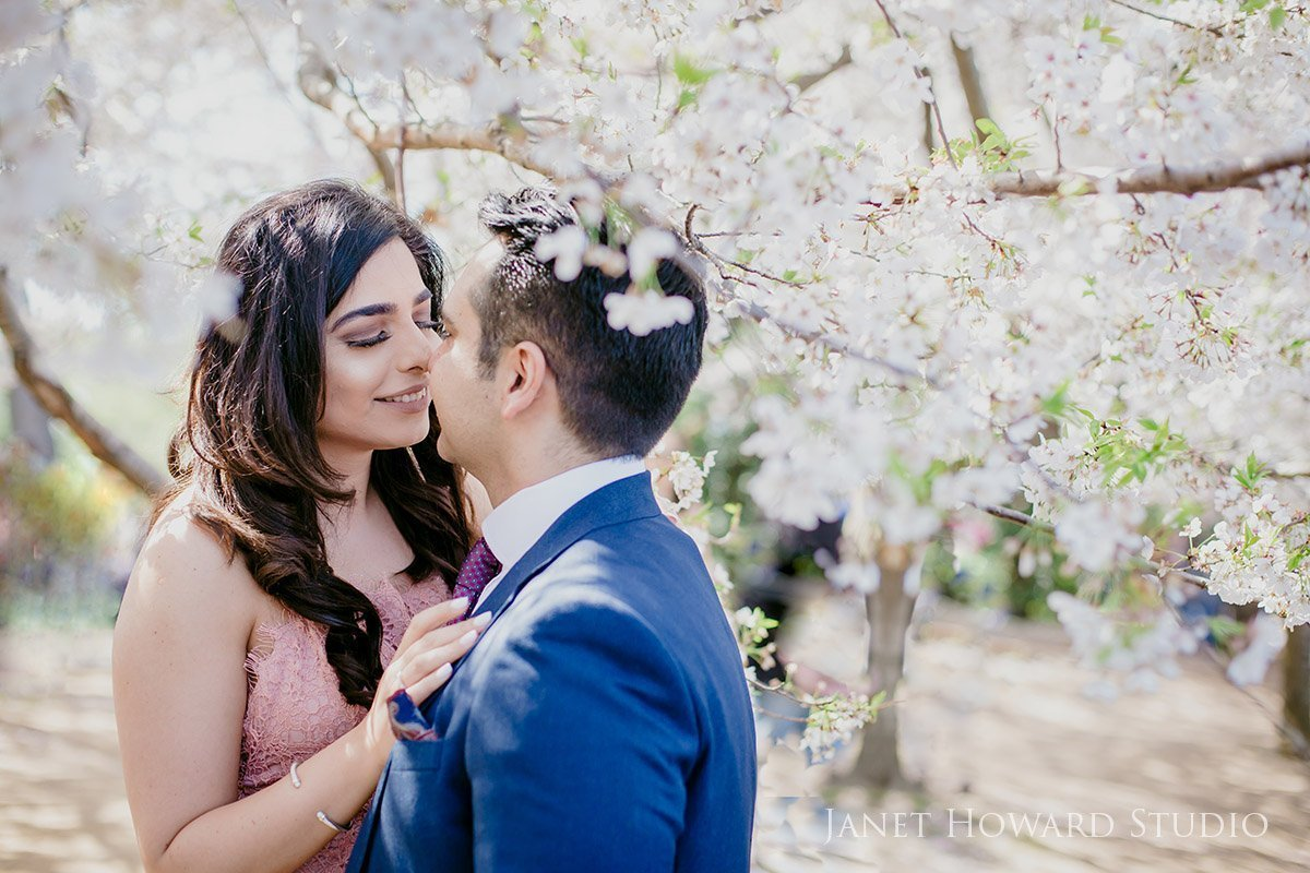 cherry blossom engagement photos