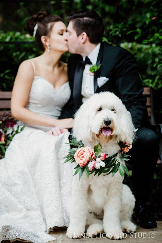 Dog floral collar for wedding