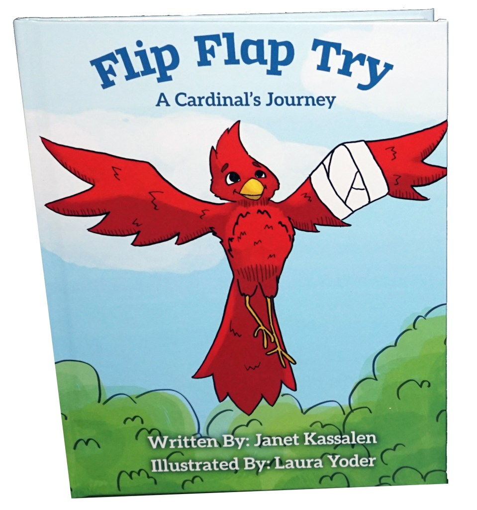 Flip Flap Try Hard Cover