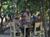 Vinales domino players