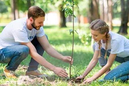 A man and a woman planting a small tree showing an act of volunteering.