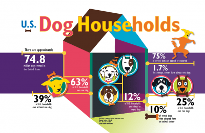 Infographic and digital illustration for Humane Society.