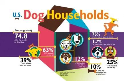 Infographic design and digital illustration for measuring U.S. Dog Housholds.