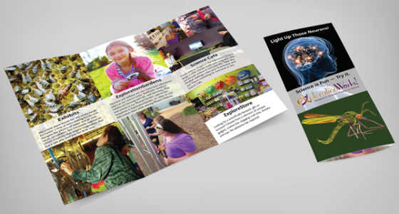 Trifold brochure design for science museum.