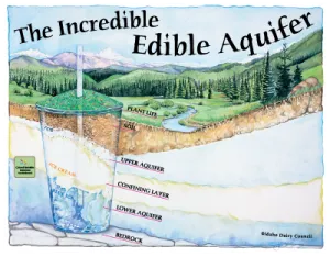 'Incredible Edible Aquifer' educational poster (edible recipe on back). Copyright Idaho Dairy Council.