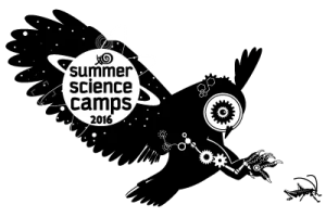 Robotic owl w grasshopper digital illustration.