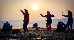 Ajummas dancing at Jindo sea parting festival