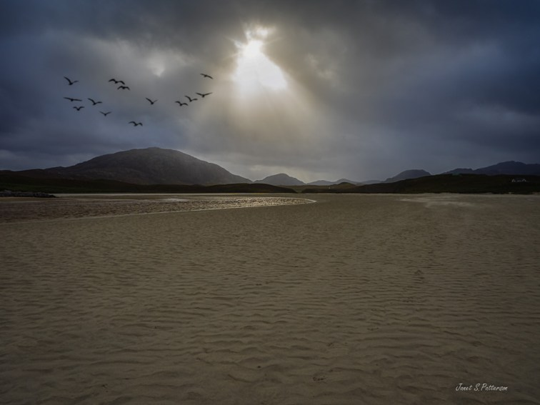 seascape, landscape, birds, ocean, Outer Hebrides, beach